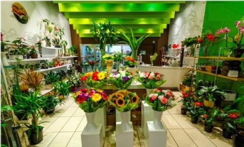 Vietnam flowers